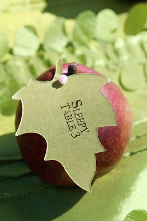 apple escort cards apple place cards